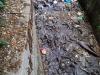 dirty_canal.jpg