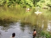 Enjoying the waters of river Kushawati