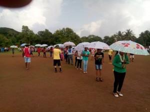 umbrellasRE